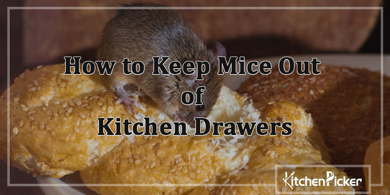 How-to-Keep-Mice-Out-of-Kitchen-Drawers